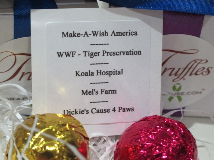 Close up view of charity donations card with 5 charities for Pam & Todd's chocolate wedding favors.